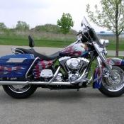 Eagle flag bike