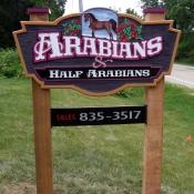 Arabians